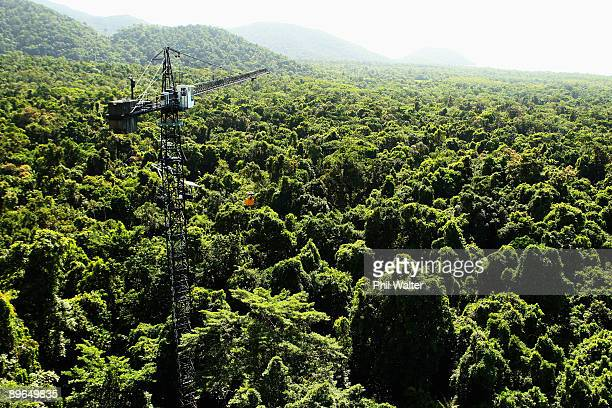 Scientists from James Cook University study the effects of climate change on the Daintree Rainforest at the Australian Canopy Crane Research Station...