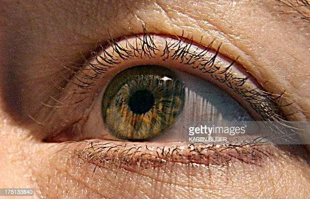 US scientists have identified two genes responsible for macular degeneration the gradual deterioration of eyesight in the elderly that can lead to...