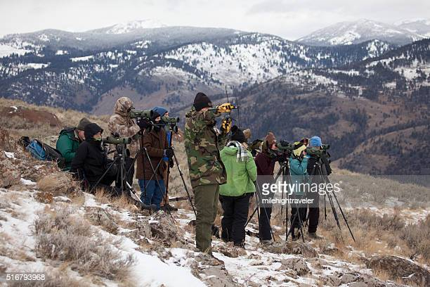 Scientists students visitors group track Yellowstone National Park wolves