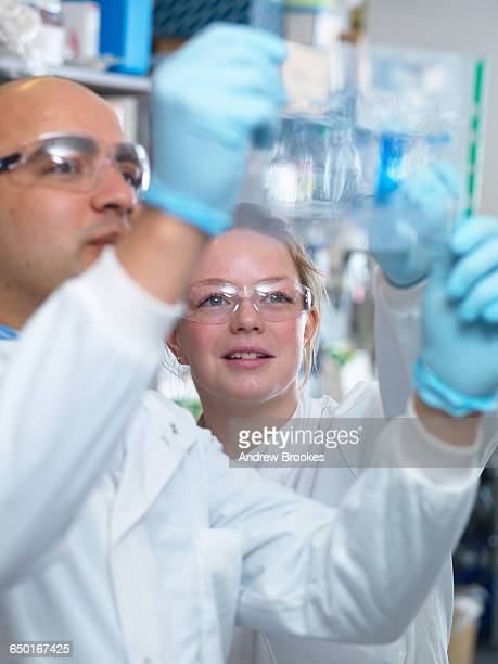Scientists viewing a protein gel, Jenner Institute, Oxford University