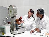 Wissenschaftler im Labor mit einem Gewicht von bis zu chicken