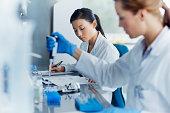 Scientists working in modern laboratory