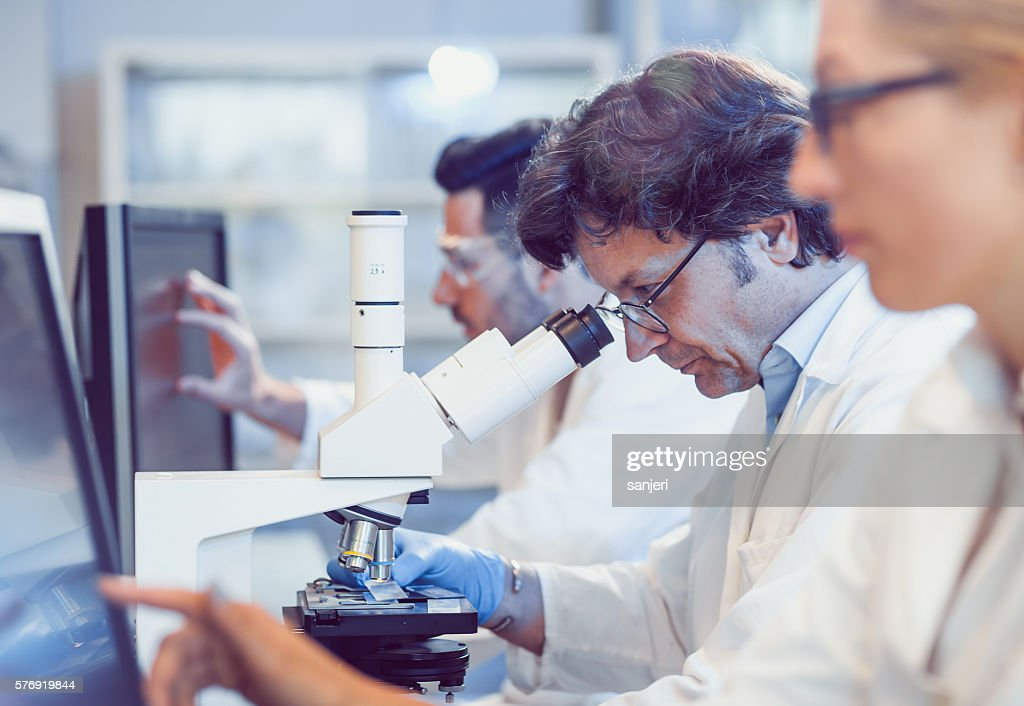 Scientists Working in the Laboratory : Stock Photo