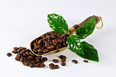 Scoop of coffee beans with leaf on white background