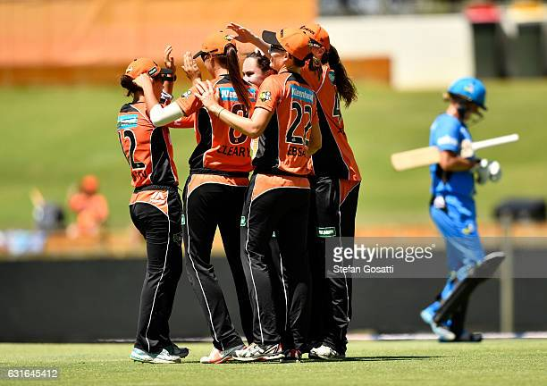Scorches celebrate after dismissing Sophie Devine of the Strikers during the Women's Big Bash League match between the Perth Scorchers and the...