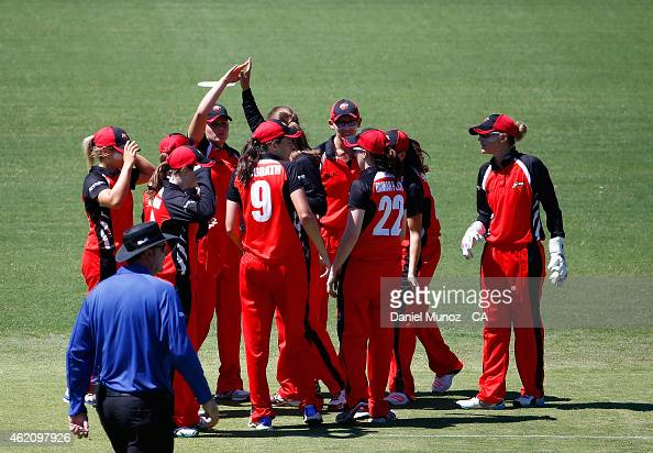 Scorpions players celebrate after taking the wicket of Alyssa Healy of the Breakers during the WNCL Final match between South Australia and New South...