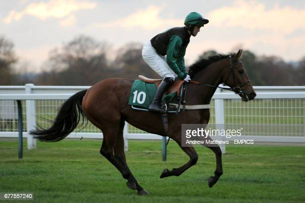 Scotsbrook Legend ridden by Ben Poste going to post for the British Stallion Studs Supporting British Racing EBF 'Junior' Fillies' Standard Open NH...