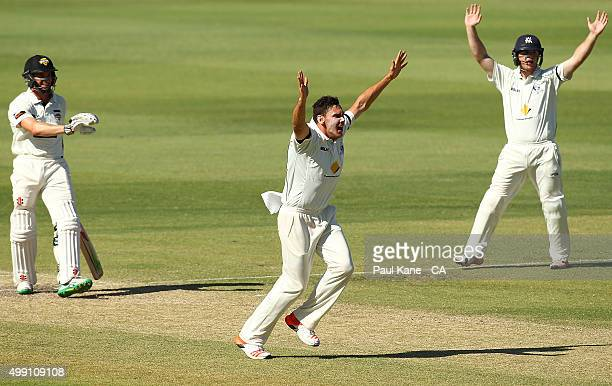 Scott Boland of Victoria successfully appeals for the wicket of Michael Klinger of Western Australia during day three of the Sheffield Shield match...