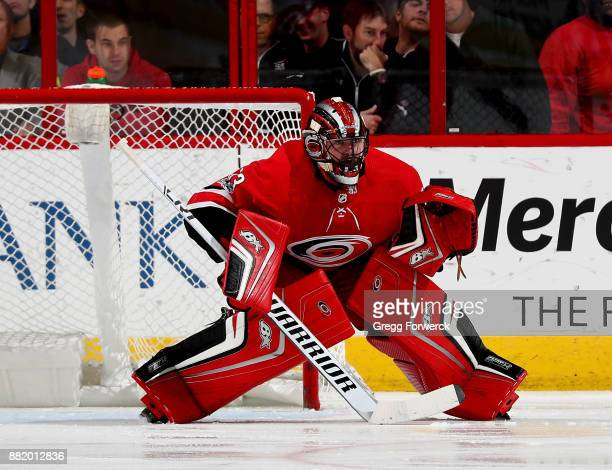 Scott Darling of the Carolina Hurricanes crouches in the crease to protect the net during an NHL game against the New York Rangers on November 22...