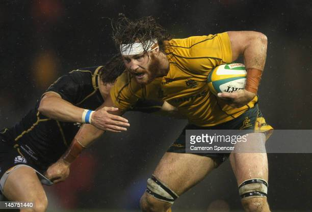 Scott Higginbotham of the Wallabies is tackled during the International Test match between the Australian Wallabies and Scotland at Hunter Stadium on...
