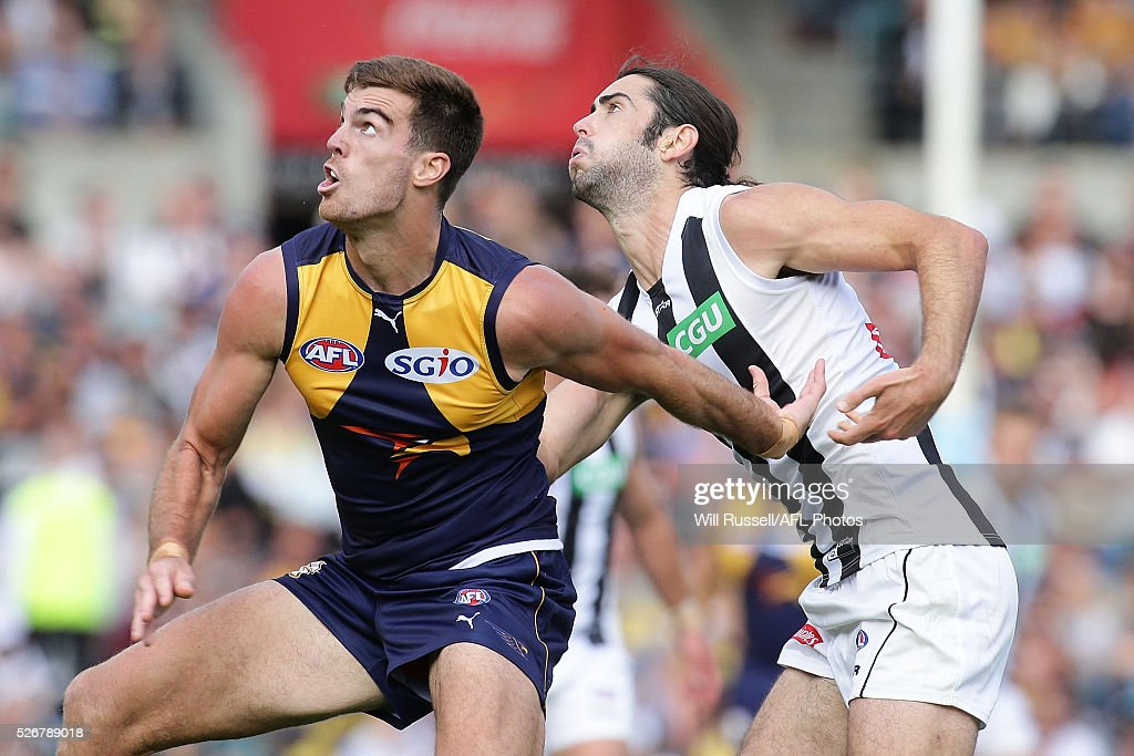 Scott Lycett of the Eagles contests a ruck with Brodie Grundy of the Magpies during the round six AFL match between the West Coast Eagles and the Collingwood Magpies at Domain Stadium on May 1, 2016 in Perth, Australia.