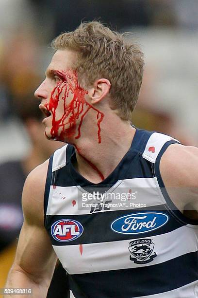 Scott Selwood of the Cats bleeds from a cut above is eye during the round 21 AFL match between the Richmond Tigers and the Geelong Cats at Melbourne...