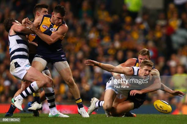 Scott Selwood of the Cats dives for the ball against Nathan Vardy of the Eagles during the round 13 AFL match between the West Coast Eagles and the...