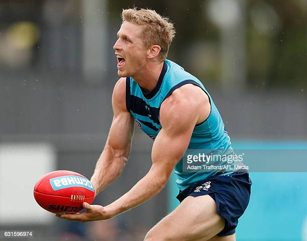 Scott Selwood of the Cats in action during the Geelong Cats training session at Deakin University Waurn Ponds on January 13 2017 in Geelong Australia