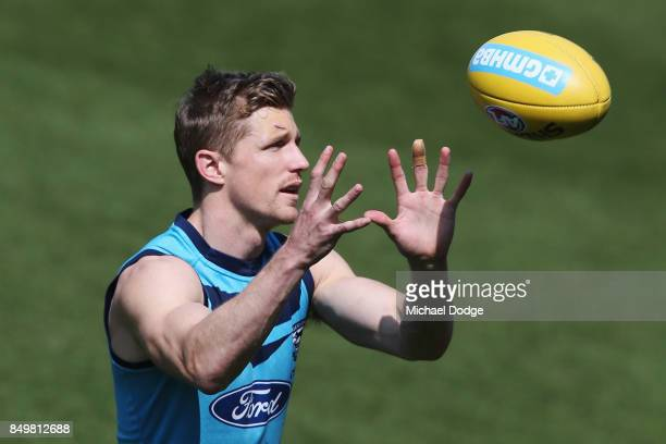 Scott Selwood of the Cats marks the ball during the Geelong Cats AFL training session at Simonds Stadium on September 20 2017 in Geelong Australia