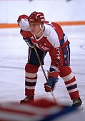 Scott Stevens of the Washington Capitals prepares for the faceoff against the Toronto Maple Leafs at Maple Leaf Gardens in Toronto Ontario Canada on...