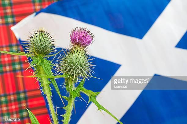 Scottish iconography