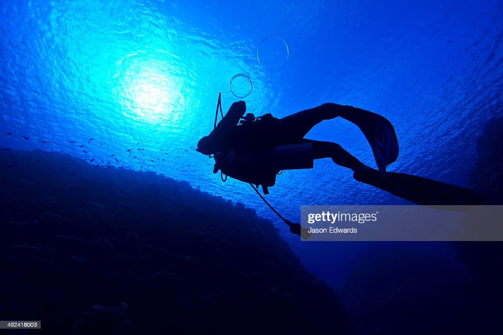 A scuba diver exhales bubble rings as he floats towards the surface.