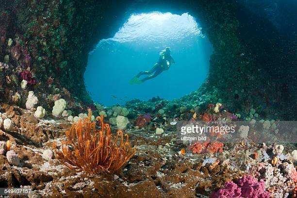 Scuba Diver in Grotto Raja Ampat West Papua Indonesia