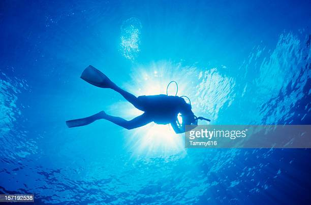 Scuba diver in the water with the sun above