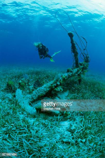 Scuba Diver Observing Sunken Anchor