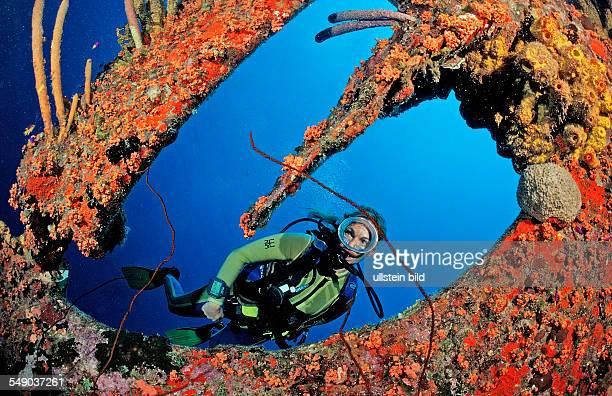 Scuba diver on the Hilma Hooker Ship Wreck Netherlands Antilles Bonaire Caribbean Sea