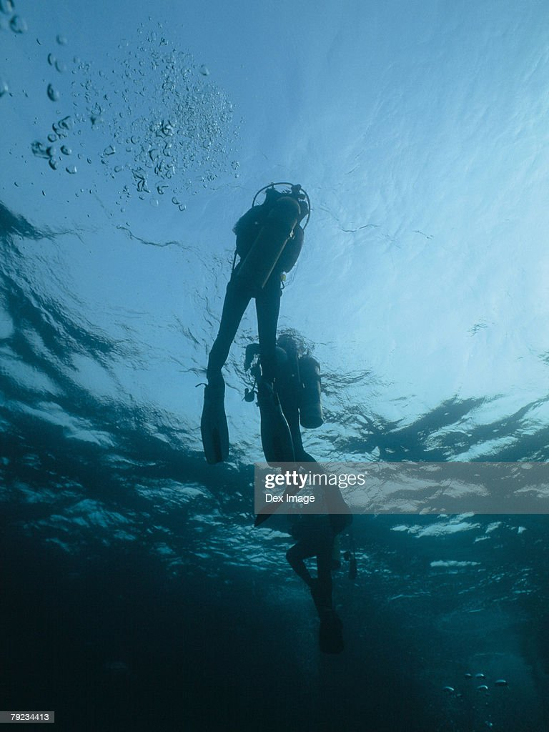 Scuba diver rising to surface, underwater view : Stock Photo
