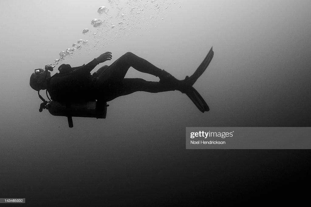 A scuba diver swims calmly underwater : Stock Photo