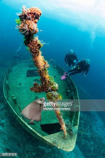 Scuba Divers, Austin Smith Wreck Dive
