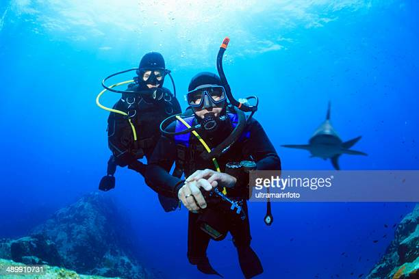 Scuba divers - Shark reef