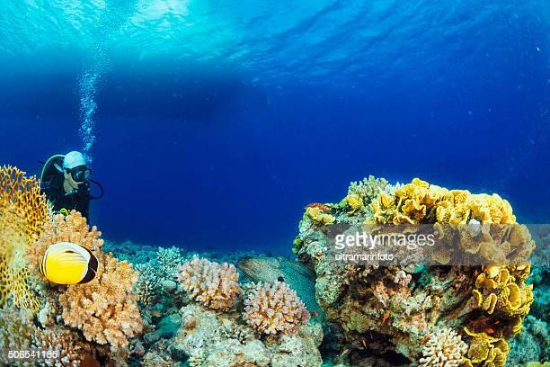 Immersioni immersione