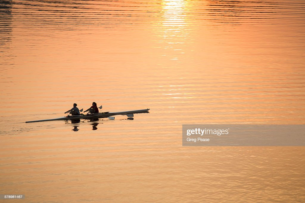 Sculling at Dawn : Stock Photo
