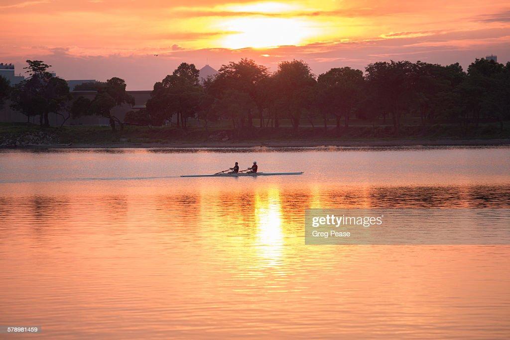 Sculling at sunrise : Stock Photo