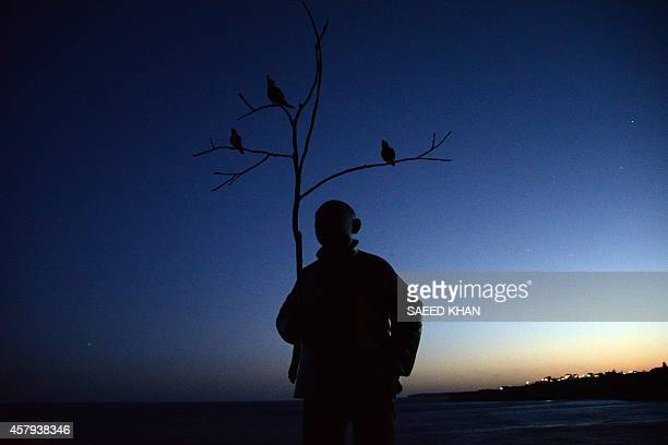 A sculpture by artist Wang Shugang of China titled 'Man playing with birds' is seen after sunset at Bondi beach in Sydney on October 27 2014 16...
