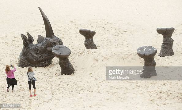 A sculpture titled Buried Rhino is seen at Sculpture By The Sea at Tamarama Beach on October 20 2016 in Sydney Australia