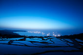 Sea and rice field