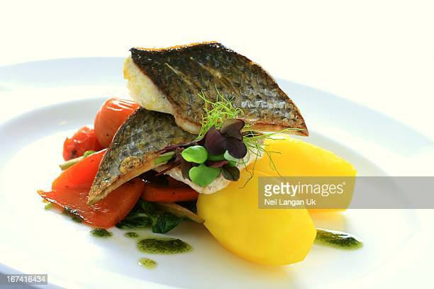 sea bass meal on white plate