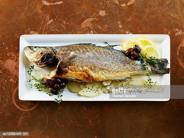 Sea bass roasted with black olives and thyme in plate, close-up, overhead view