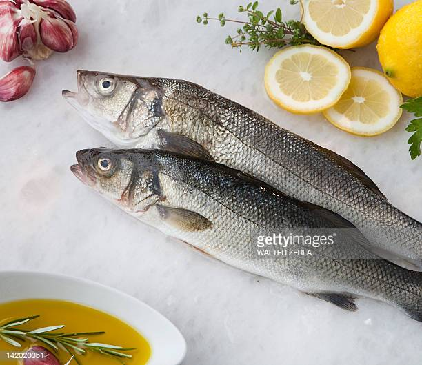 'Sea bass with lemon, olive oil and herbs'