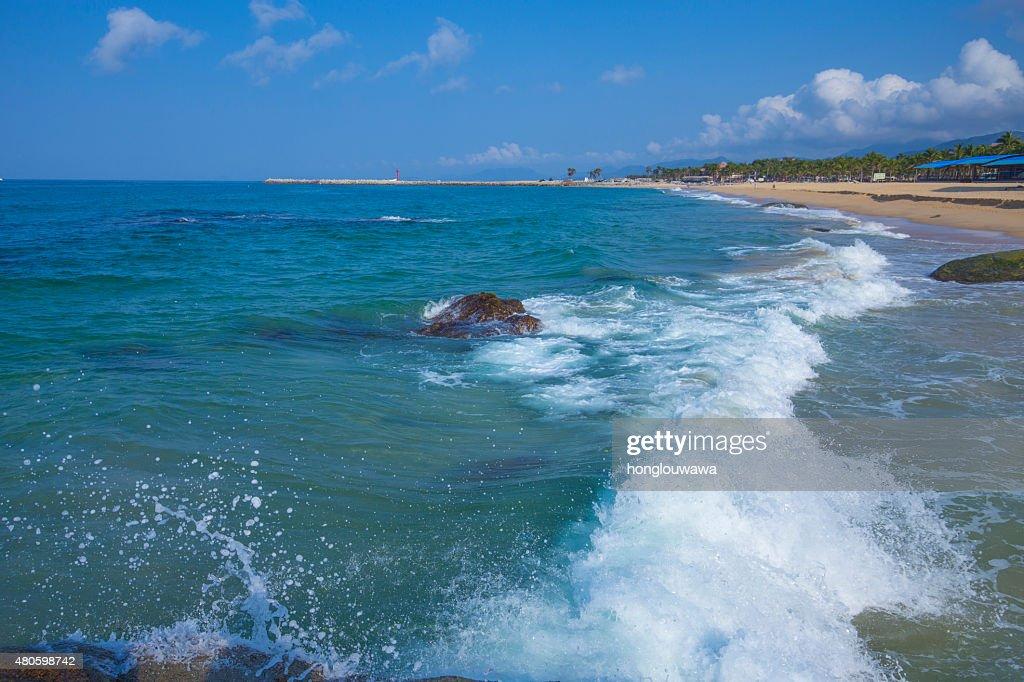 Sea beach : Stock Photo