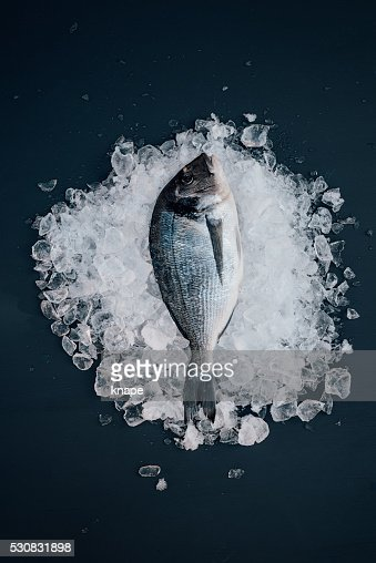 Sea bream on ice seafood still life