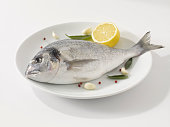 Sea bream fish in plate