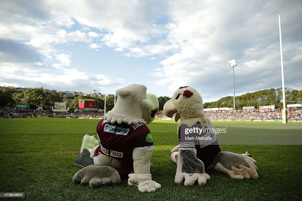 Sea Eagles mascots talk as they watch the round nine NRL match between the Manly Sea Eagles and the Newcastle Knights at Brookvale Oval on May 10, 2015 in Sydney, Australia.