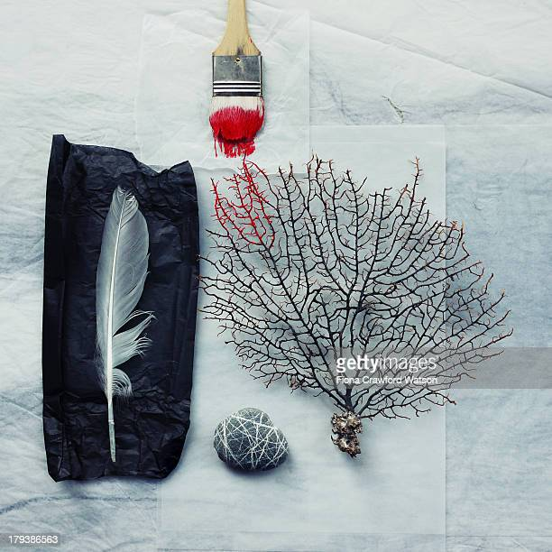 sea fan, pebble and paintbrush with red paint