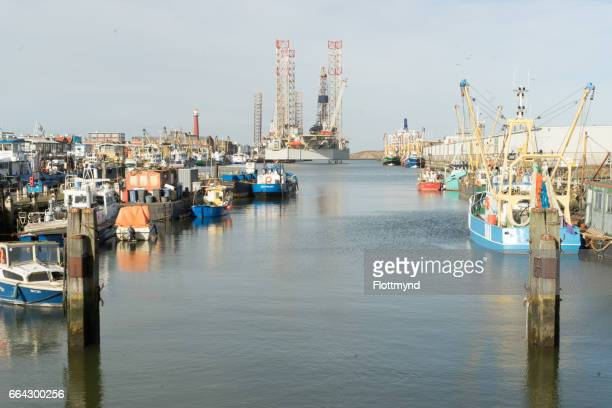 Sea harbour IJmuiden
