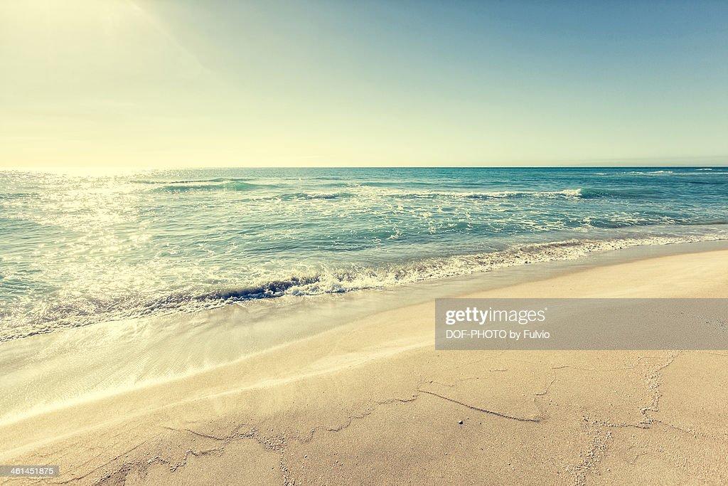 Sea in winter : Stock Photo