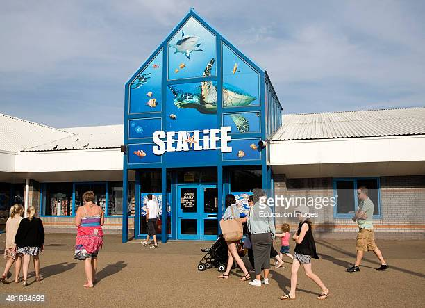 Sea life aquarium attraction Great Yarmouth Norfolk England