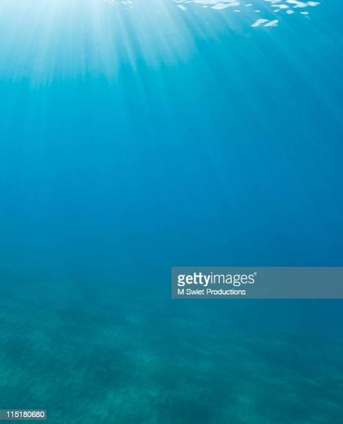 sea light background