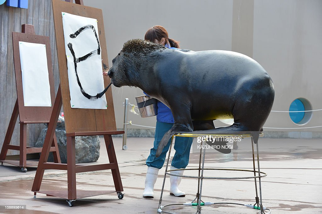 Sea lion 'Jay' paints a Chinese character reading 'the Serpent' at the Hakkeijima Sea Paradise aquarium in Yokohama, suburban Tokyo on January 3, 2013. The event, marking the forthcoming Chinese lunar calender year of the snake was held as part of a New Year's attraction. AFP PHOTO / KAZUHIRO NOGI