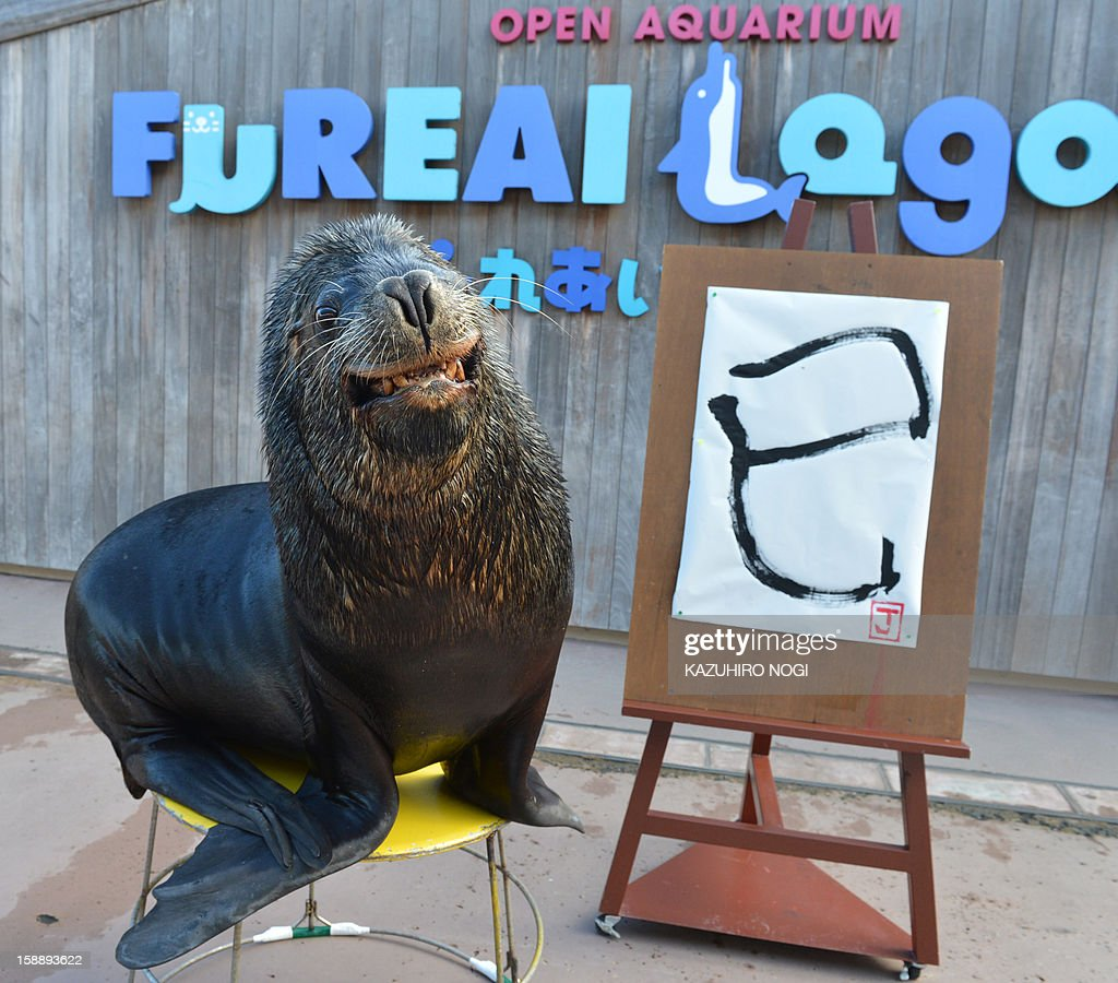 Sea lion 'Jay' poses with his 'calligraphy' of a Chinese character reading 'the Serpent' at the Hakkeijima Sea Paradise aquarium in Yokohama, suburban Tokyo on January 3, 2013. The event, marking the forthcoming Chinese lunar calender year of the snake was held as part of a New Year's attraction. AFP PHOTO / KAZUHIRO NOGI
